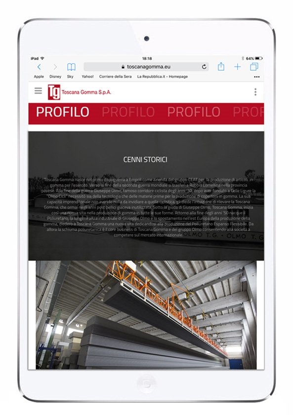 Responsive Website | Graphic Layout 3